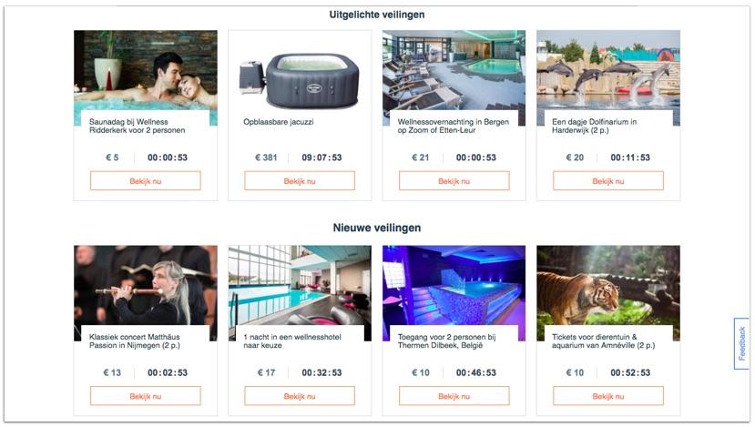 Vakantieveilingen.nl - veilingen model